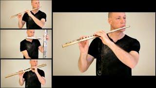 getlinkyoutube.com-Game of Thrones flute cover by Wouter Kellerman