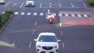 「あっ行っちゃえ」は白バイには通用しない!女性の交通機動隊に信号無視で捕まる違反車!Japanese Motorcycle police