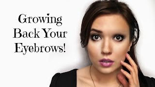 getlinkyoutube.com-Growing Back Your Eyebrows