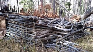 "getlinkyoutube.com-New Bigfoot World "" Predator Hill""  Insane Structures,Bigfoot Poop, Teepee ,and Hut found"