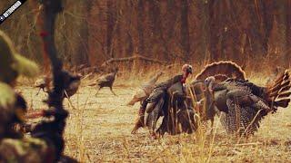getlinkyoutube.com-The Most Insane Turkey Bow Hunt Ever!