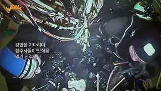 getlinkyoutube.com-다이빙벨 해외판(감독판) 무료 공개