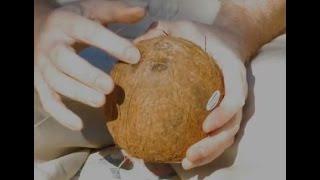 How to peel coconut (The Secret)
