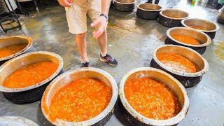 Indian Street Food FACTORY - Enter Street Food HEAVEN - Hyderabad, India - BEST Street Food in India width=