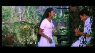 Nanthanam Malayalam Movie | Malayalam Movie | Navya Nair | Confused by Unnikrishnan