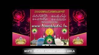 getlinkyoutube.com-Speech on Mufti Mujeeb Ashraf Sahab Qibla - Faizan E TajushShariah Confrence Amravati