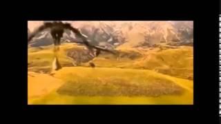 getlinkyoutube.com-Las Crónicas de Narnia -El león, la bruja y el armario- Escena batalla