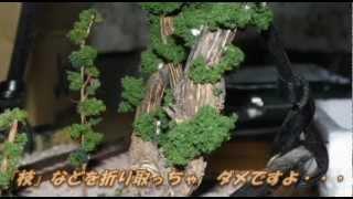 getlinkyoutube.com-『newkiha5828』の『大木(たいぼく)』の作り方 【鉄道模型】