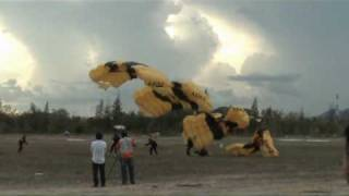 getlinkyoutube.com-Paratroopers in Cha-am