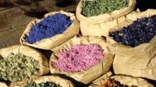 getlinkyoutube.com-come curarsi con le erbe a rbs  1 parte