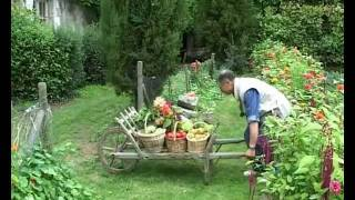 getlinkyoutube.com-Jardinage sans travail du sol