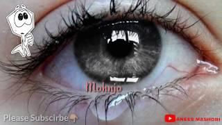 Sindhi Whatsapp Status|Master Manzoor|Sad|Love|Status|New2018