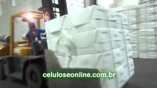 Exclusivo assista os bastidores da nova fábrica da Suzano - Celulose On TV