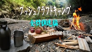 getlinkyoutube.com-【野遊び】ちょっと自給自足なBushcraftキャンプ(前編:食材調達編)