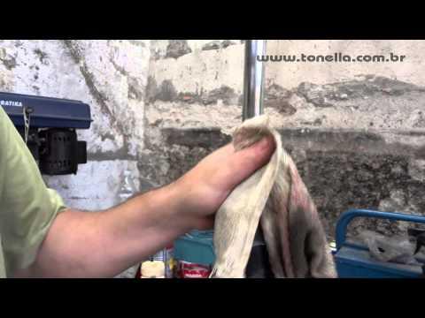 Tonella - troca do batente do amortecedor fiat 3/4