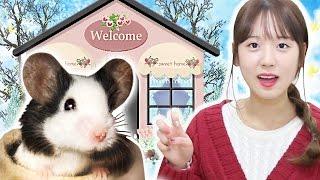getlinkyoutube.com-[이루리] 생쥐의 새로운 자이언트 러브하우스! 팬더마우스의 첫 눈 내린 새하얀 하우스를 소개합니다!/ Tiny Hamster New Giant House