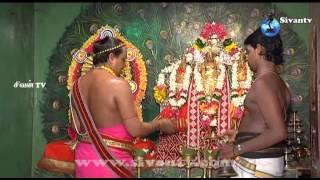 வண்ணை கோட்டையம்பதி சிவசுப்பிரமணியர் கோயில் 8ம் நாள் பகல்த்திருவிழா