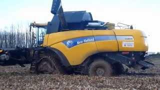 getlinkyoutube.com-Corn Harvest - moisson maïs 2010 NH CX8050