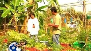 getlinkyoutube.com-กินอยู่คือ - คับที่ ก็ปลูกผักได้ 21Feb12