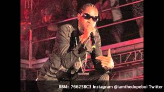 Bounty Killer - Harder (Mavado Warning)