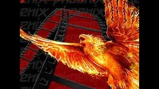 getlinkyoutube.com-How to install Phoenix addon on Kodi