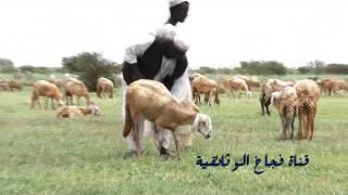 getlinkyoutube.com-جمال الطبيعة في بادية السودان 2013