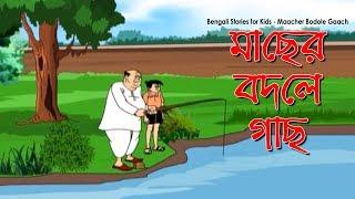 getlinkyoutube.com-Bengali Comedy Video | Maacher Bodole Gaach | Popular Comics Series | Animated Comedy Cartoon