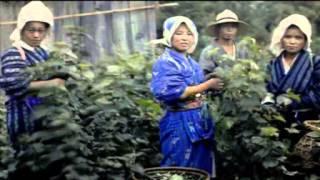 getlinkyoutube.com-外国人カメラマンが見た戦前の日本