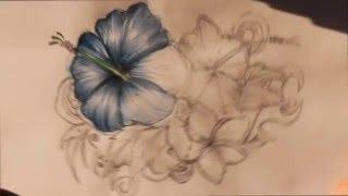 getlinkyoutube.com-como dibujar flores a color