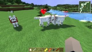 getlinkyoutube.com-當個創世神※Minecraft※模組介紹-才能狗狗(1/2)
