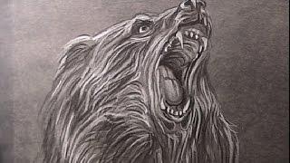 getlinkyoutube.com-Hoe teken je een Beer / dieren tekenen / #35