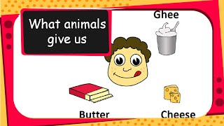 getlinkyoutube.com-Science - Uses of Animals - English