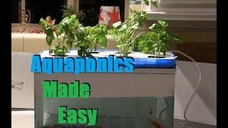 getlinkyoutube.com-Cheap and Easy $35 Aquaponics / Hydroponics Setup