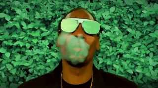 Snoop Dogg & Pharrell - Bush [Album Trailer]