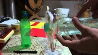 getlinkyoutube.com-Como hacer un bebedero de colibris Facil y Barato HD
