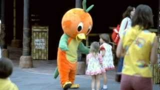 Communicore Weekly - Orange Bird, Disneyland World Of Flowers, Fuzzy Photo, Davis Tobacco