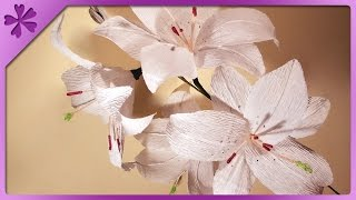 DIY Tissue paper lilies (ENG Subtitles) - Speed up #16