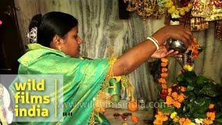 Phallus worship: Hindu woman prays and pours milk over Shiva's lingam