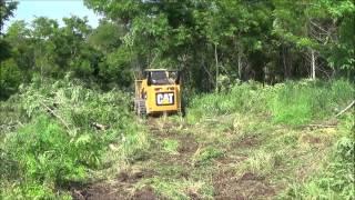 Perfect TreeSaw dual cutting locust trees