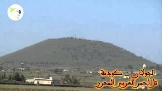 getlinkyoutube.com-مجوز الليموني أبو سلطان - حفلة قطنا
