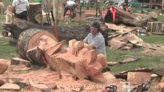 getlinkyoutube.com-Barbara & Alan record Chainsaw Wood Sculptures at Woodfest Wales