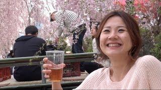getlinkyoutube.com-[グルメ旅行]モンちゃん宇都宮の旅❤お花見❤イカ焼き❤