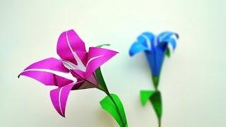 getlinkyoutube.com-Origami lily /พับกระดาษ ดอกลิลลี่ง่ายจัง