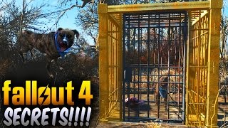 getlinkyoutube.com-Fallout 4 Secrets - Secret Caged Dog That Leads You To a Secret Trader! (Fallout 4 Things To Know)