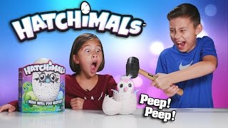 getlinkyoutube.com-EVAN SMASHED MY HATCHIMALS!!! Surprise Egg - Review & Destroy!