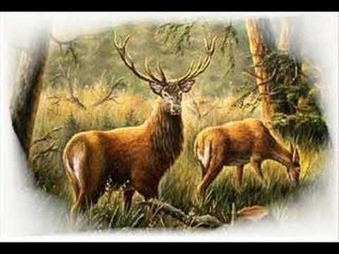 Poľovnícke signály Koniec činnosti