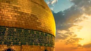 getlinkyoutube.com-زيارة أمين الله - الحاج حسين غريب