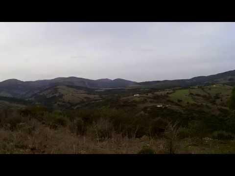 caccia cinghiale Sardegna 23 11 2014 missile sardo