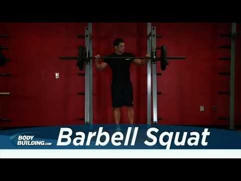 Squat - Leg Exercise - Bodybuilding.com