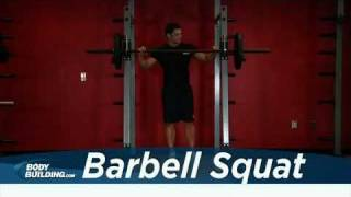 Bacak Hareketi &  Squat - Leg Exercise